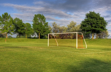 An empty soccer goal with trees in the background