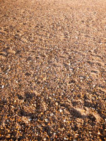 Beach floor background texture stones cobbles various wet sun; west Mersea, Essex, England, UK