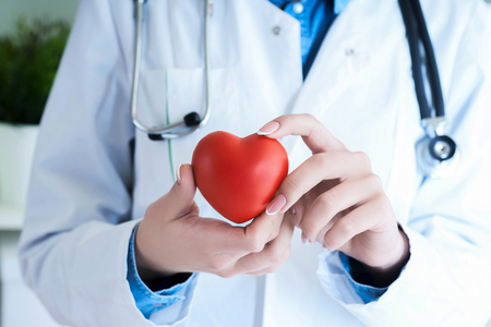 Photo for Female medicine doctor hold in hands red toy heart close -up. Cardio therapeutist student education concept - Royalty Free Image