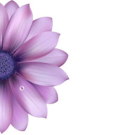 Illustration pour Lilac Flower, Isolated On White Background, Vector Illustration  - image libre de droit