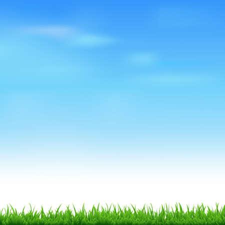 Illustration pour Landscape With Grass - image libre de droit