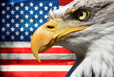 Photo pour Eagle portrait closeup symbol over usa or us stripes and stars flag - image libre de droit