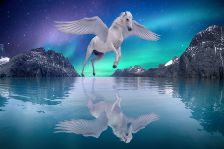 Photo for Pegasus winged legendary white horse flying with spread wings on dreamy landscape - Royalty Free Image