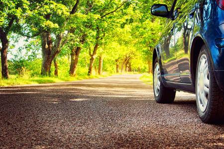 Car on asphalt road on summer day at park