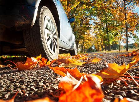 Photo pour Car on asphalt road on autumnr day at park - image libre de droit