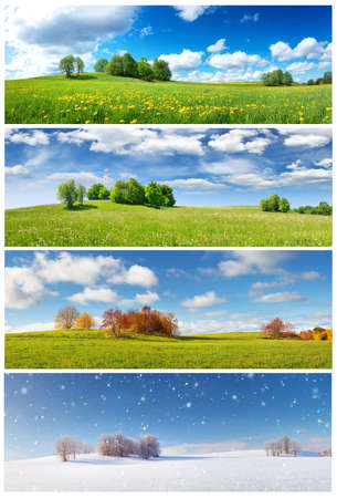 Foto de Beautiful trees in four seasons landscape on the field - Imagen libre de derechos