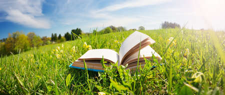 Photo for Open book in the grass on the field - Royalty Free Image