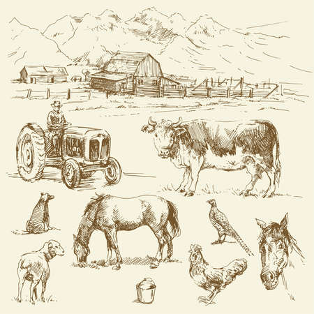 farm - hand drawn collection のイラスト素材