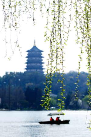 Caoyuan73150100105