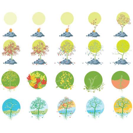 Vektor für set of tree icons - Lizenzfreies Bild