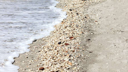 Beach of Sanibel Island with shells and waves, Florida, USA