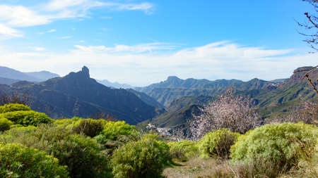Spring time in the mountains of Canary Islands in the background Roque Bentayga and Alta Vista, over all a cloudy blue sky, Spain