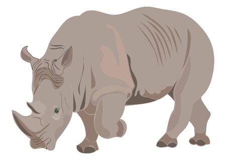 Ilustración de Rhino illustration - Imagen libre de derechos