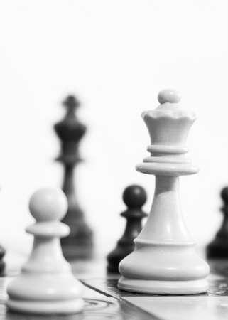 Foto de Chess photographed on a chessboard - Imagen libre de derechos