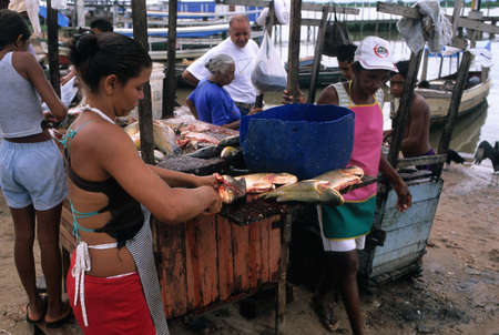 Women cleaning fish in market stall .Montealegre (Amazonas) BRAZIL