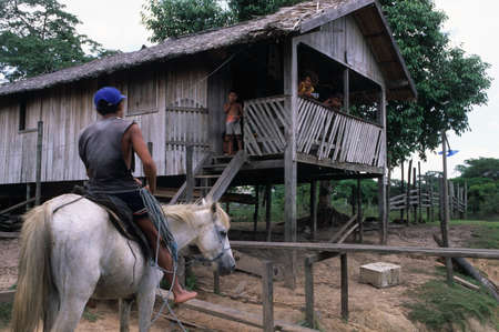Man on horseback against  stilts. Camutins MARAJO ISLAND (Amazon). BRAZIL
