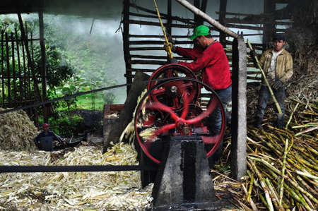Panela ( sugarcane ) in ISNOS ( San Agustin ). Department of Huila. COLOMBIA