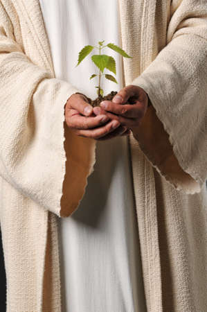 Jesus hands holding a plant as a symbol of you reap what you sow