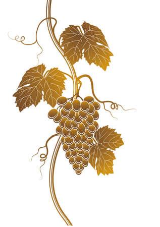 Grapes silhouette