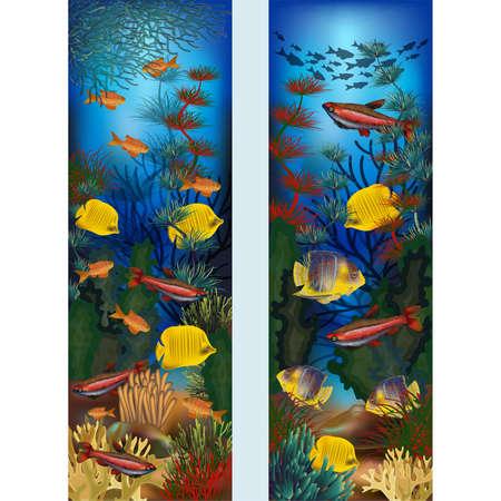 Illustration pour Underwater vertical banners with algae and tropical fish, vector illustration - image libre de droit