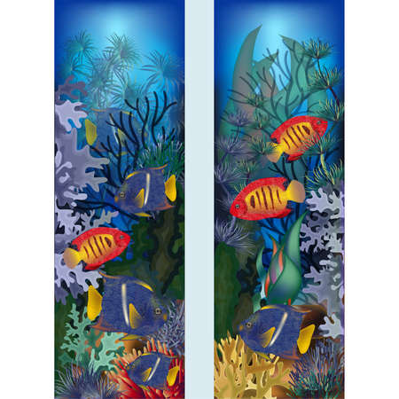Illustration pour Underwater vertical banners with tropical fish, vector illustration - image libre de droit