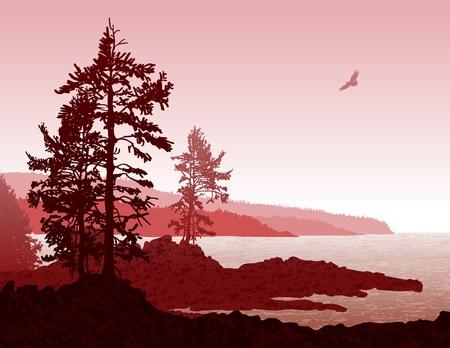 Foto de Inspiring illustration of the rugged west coast of Vancouver Island - Imagen libre de derechos