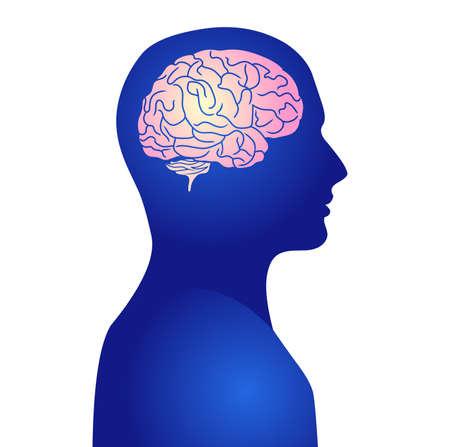 Photo pour Human active brain vector illustration - image libre de droit
