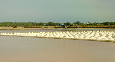 Salt will be produced in saline, Thailand.