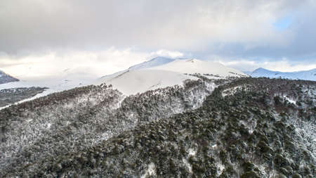 Corralco Chile Storm During Winter Araucaria Forest