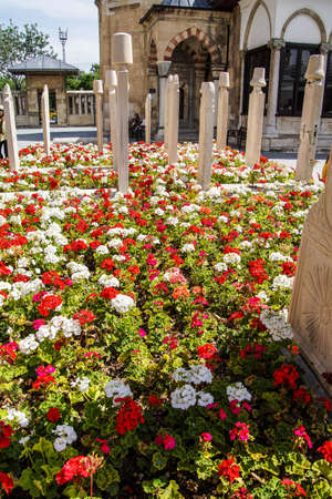 Flowers in the cemetery  in the courtyard of the Mevlana Shrine,  Konya, Turkey