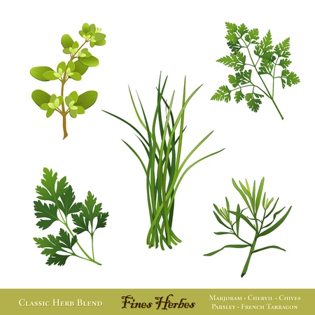Fines Herbes Classic French Herb Blend Sweet Marjoram Chervil