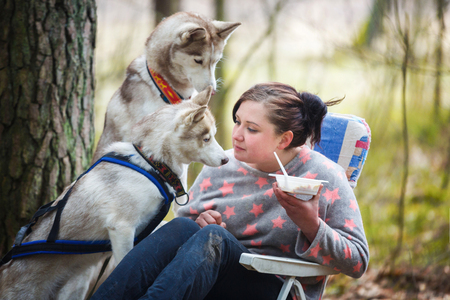 Photo for Woman has a lunch after competition but huskies are begging for her food in a spring forest - Royalty Free Image