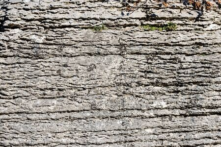 Photo pour Background of layered rock (limestone) separated by layers of clay. Lessinia stone or Prun stone. Plateau of Lessinia, Verona, Veneto, Italy - image libre de droit
