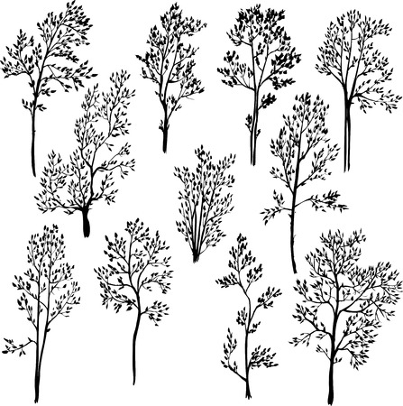 set of different spring trees, vector illustration