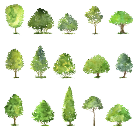 Ilustración de vector set of trees drawing by watercolor, bushes and decidious, green green foliage,isolated natural elements, hand drawn illustration - Imagen libre de derechos