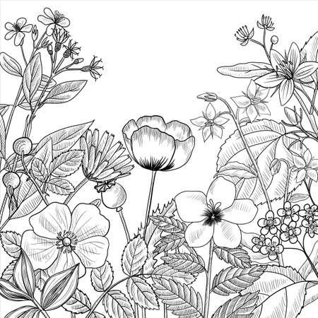 Illustration pour vector drawing floral vintage template - image libre de droit