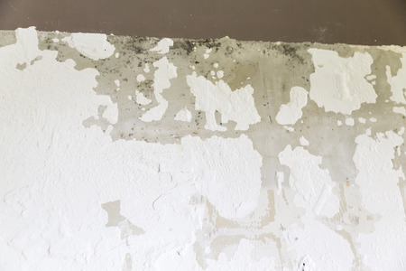 Textured ragged white wall plaster, after taking out tile. The wall have to be repaired with plaster