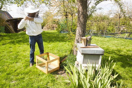 Photo for The study of bees, which includes the study of honey bees, is known as melittology. This Beekeeper is ready to check on the bee hive while wearing protective clothing in an attempt to not be stung. With smoker and brush. - Royalty Free Image