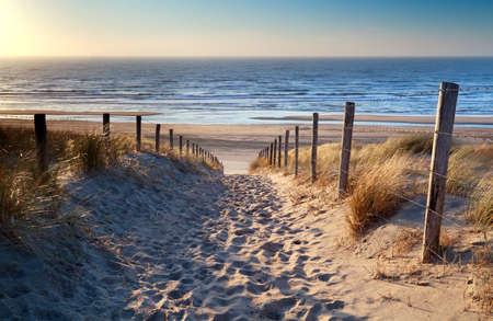 Photo pour path to North sea beach in gold sunset sunshine, North Holland, Netherlands - image libre de droit