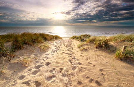 Photo pour sunshine over sand path to North sea beach in summer - image libre de droit