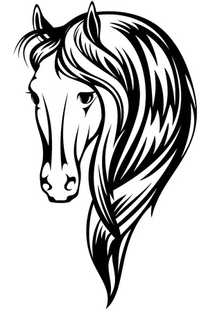 beautiful horse illustration - black and white outline of a head with a long mane