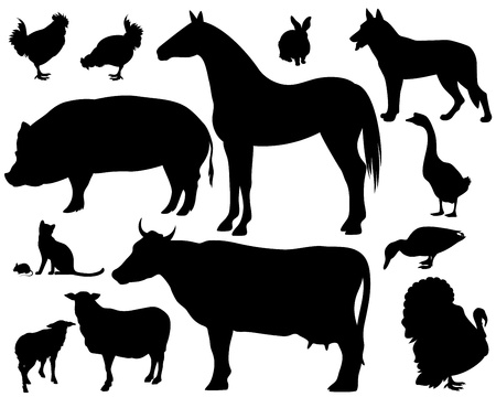 Photo for on the farm - set of fine animals silhouettes - black outlines over white - Royalty Free Image