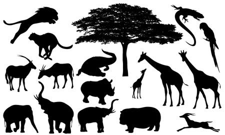 Ilustración de african wildlife fine vector silhouettes - black and white fauna and flora detailed outlines - Imagen libre de derechos