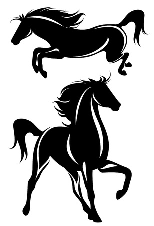 beautiful horses black and white design - detailed vector outline