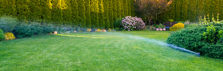 Photo pour Irrigation of the green grass with sprinkler system. - image libre de droit