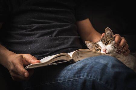 Photo pour Reading book on sofa with cuddling of cat. - image libre de droit