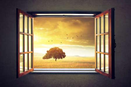 Foto de Looking out an open window to a sunny spring countryside landscape - Imagen libre de derechos