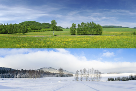 Foto de Comparison of 2 seasons - winter and summer - Imagen libre de derechos