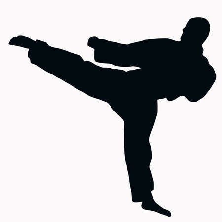 Sport Silhouette - Karate Kick isolated black image on white background