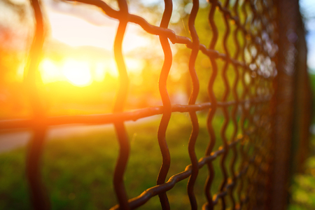 fence with metal grid in perspective, background